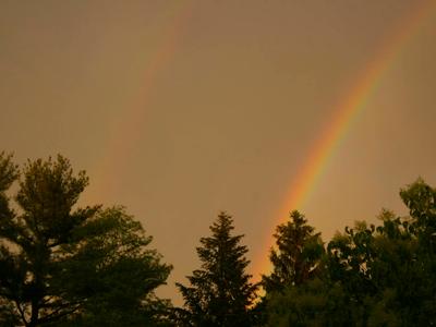 Doulble rainbow- www.PollyCastor.com