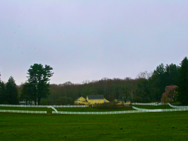 New Pond Farm