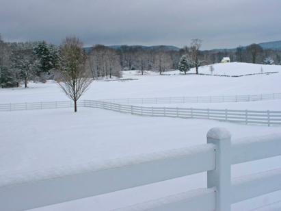 snow New Pond Farm