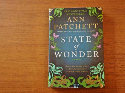 state of Wonder book