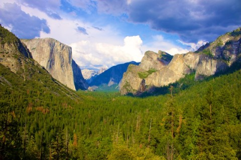 Photos of Yosemite