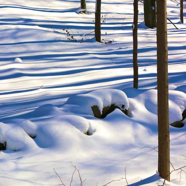 snow photos, Jonas snowstorm photos