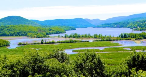 Jim Palmer Quote, View of Hudson from Boscobel