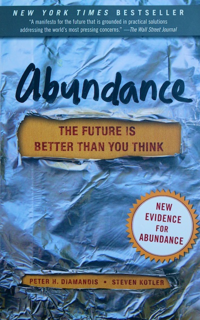 Book Review: Abundance