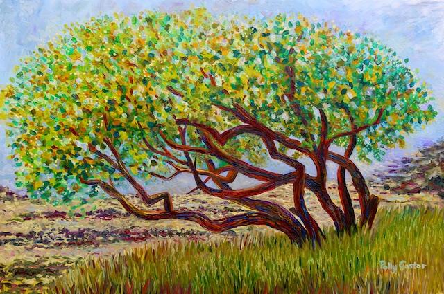 Islesford Apple Tree Near Sand Beach