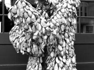 Recent Black & White Photographs