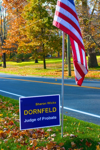 vote for Sharon Dornfeld probate judge