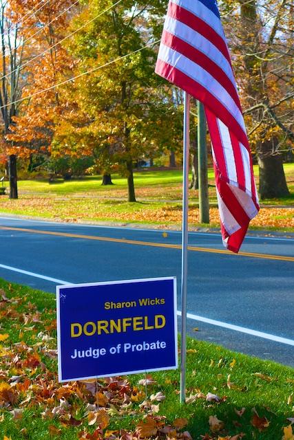vote for Sharon Dornfeld probate judge