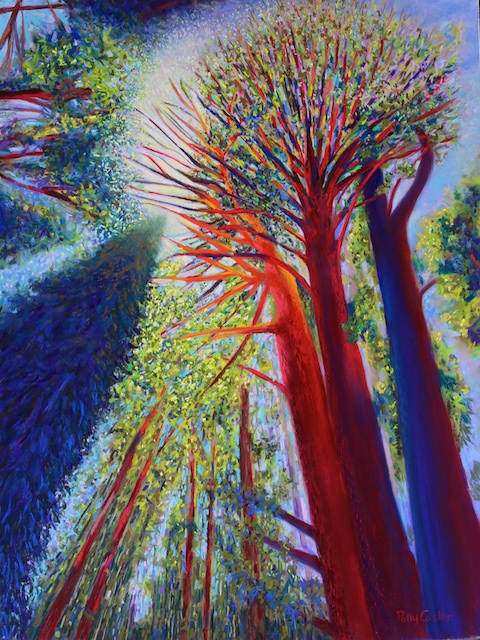 Reaching for the Light (pastel) by Polly Castor