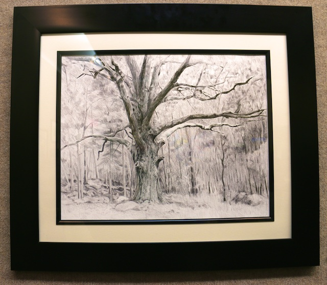 Barbizon Oak (graphite) by Mary Mellot