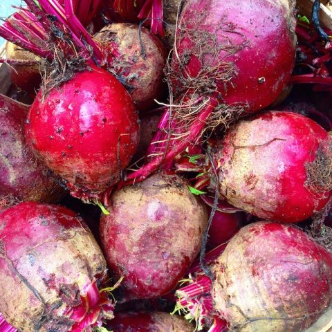 How to Roast Beets (with Photos of Our Bumper Crop)