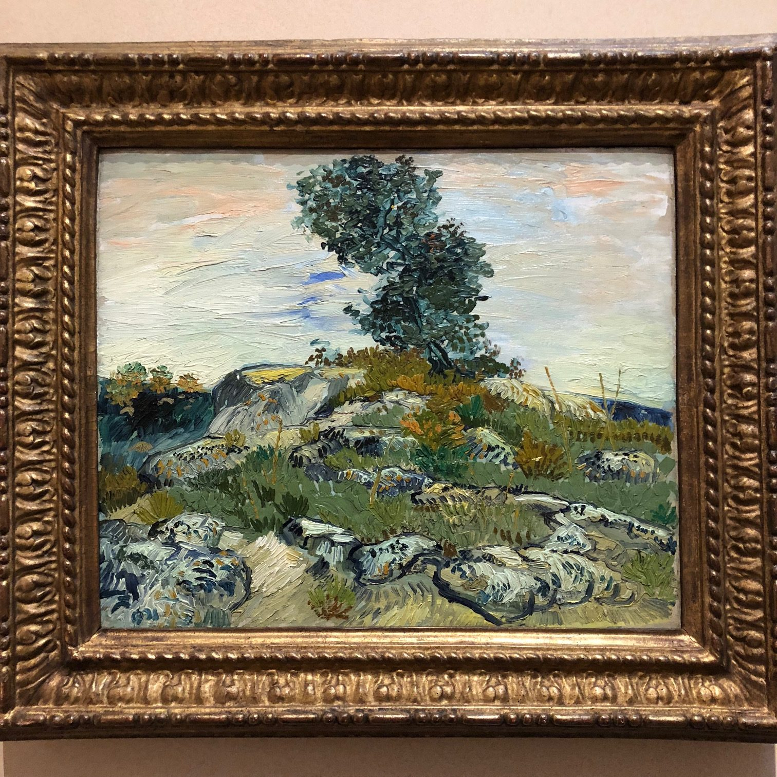 "Close-up Details of Van Gogh's Painting ""The Rocks"""