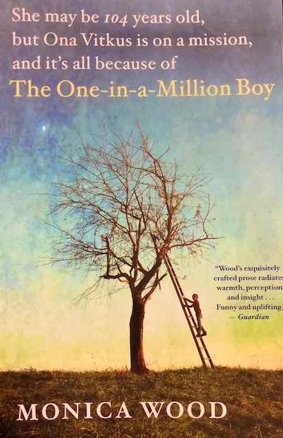 The One in a Million Boy (Book Review)