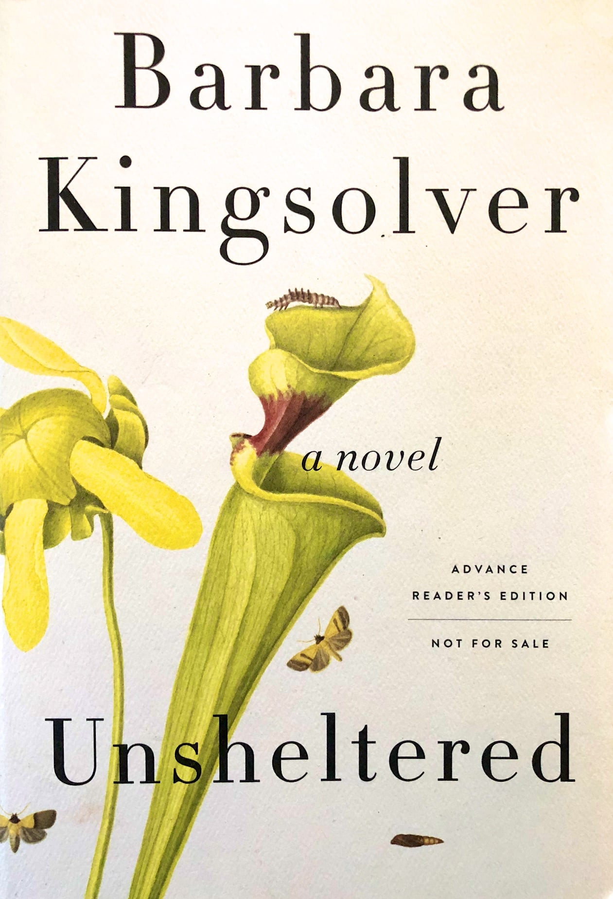 Unsheltered (Book Review)