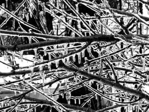 Ice-Bound (New Poem by Polly Castor)