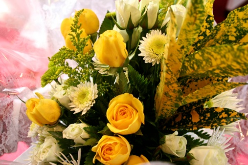 Thank you yellow roses-www.PollyCastor.com