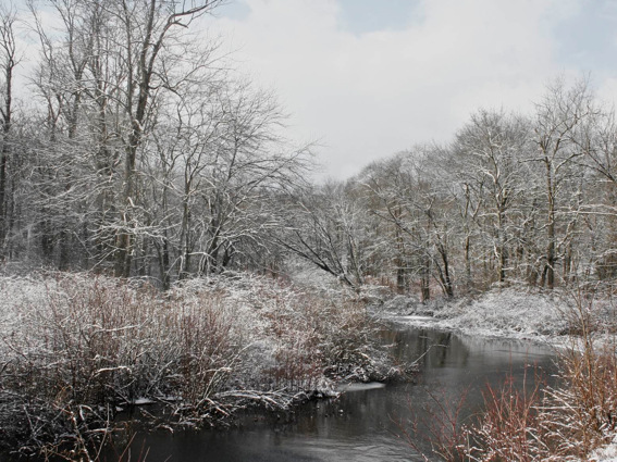 snow scene at the river-pollycastor.com