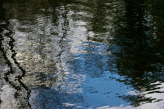 Polly Castor Photography: Reflections