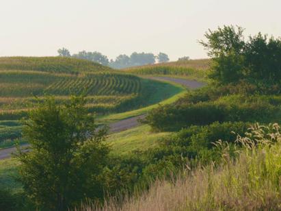Missouri farmland