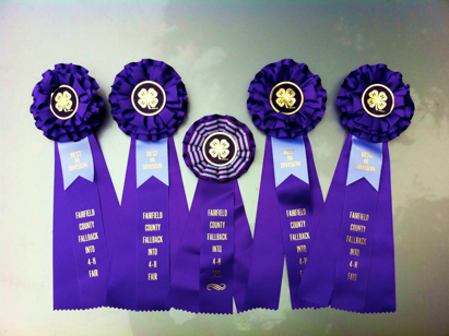 4H Fair ribbons