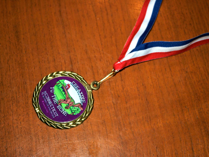 Destination ImagiNation medal