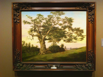 The Connecticut Charter Oak