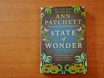 state of Wonder book