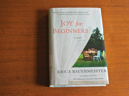 Joy for Beginners, Joy for Beginners book