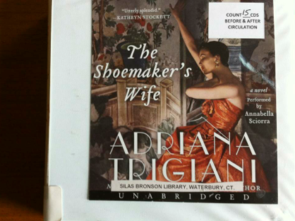 the shoemaker's wife book, shoemaker's wife book review, the shoemaker's wife book review