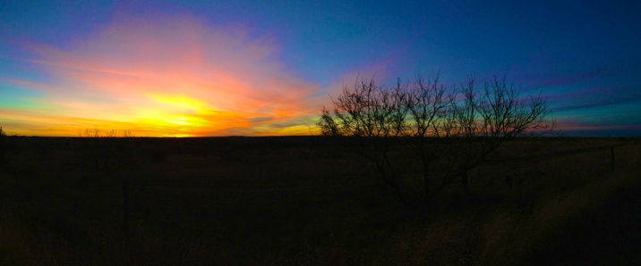 Texas sunsets