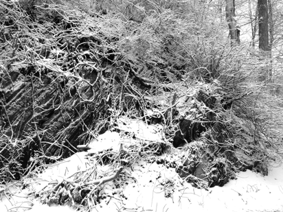 black and white snow photos