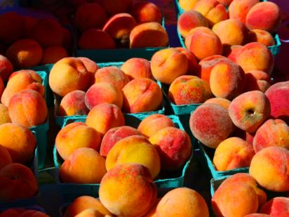 Stonington Farmer's Market