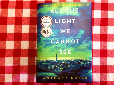 book review All the Light You Cannot See