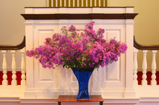 photos of purple asters, aster bouquet, photos of church flowers