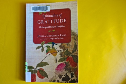 Quotes from Spirituality of Gratitude