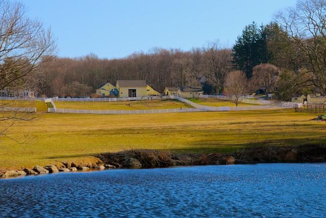New Pond Farm photos