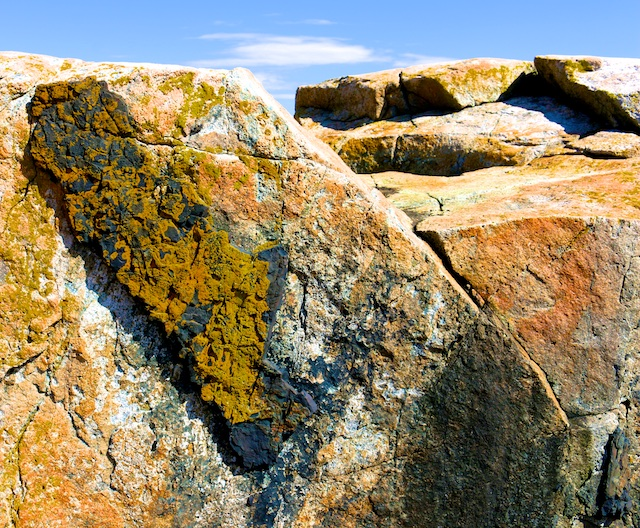 Schoodic peninsula rocks and surf