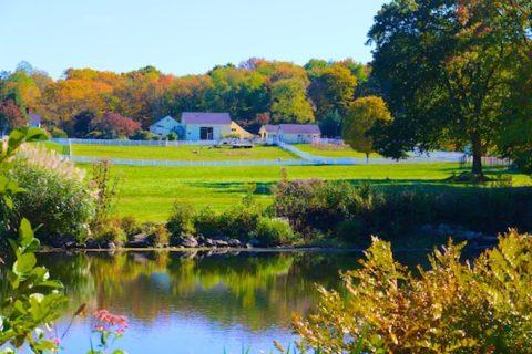 New pond farm autumn photos