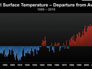 Environmental Data ( Both Bad and Good News)
