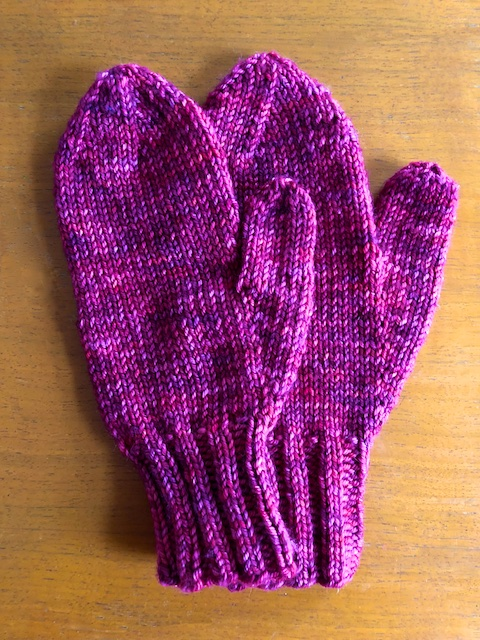 I Knit My First Pair of Mittens
