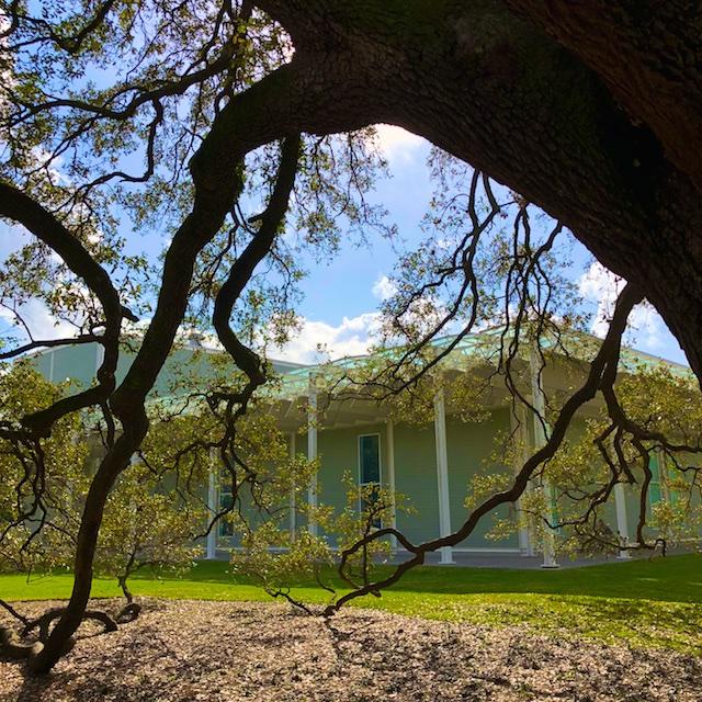 Houston's Menil Museum