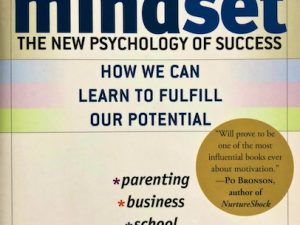 Mindset (Book Review)