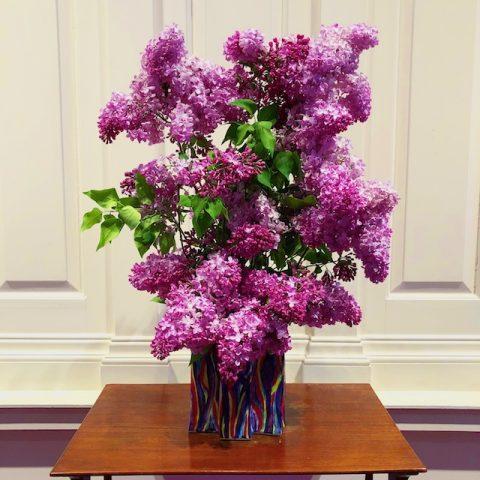 Lilac Photos 2018