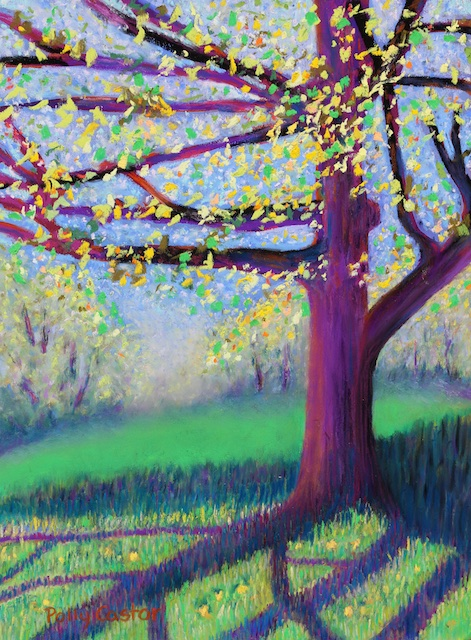 Spring Shadows at New Pond Farm (pastel) by Polly Castor