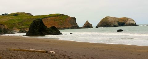 Rodeo Beach, California (Photos)