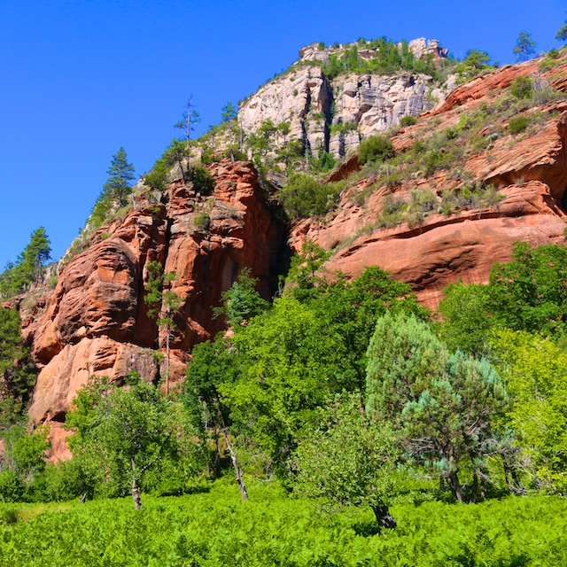 Photos from my Hike In Sedona (Six Miles in 100ºF Heat)