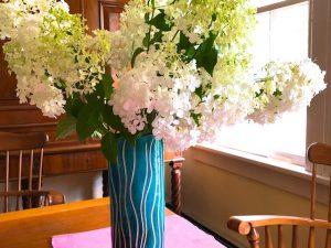 Photos of Summer Flowers