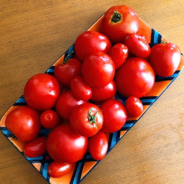 Ideas for Processing Fresh Tomatoes