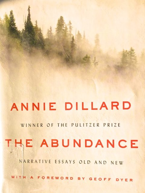 The Abundance (Book Review)