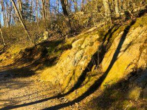 Stripes Across the Ground (Haiku by Polly Castor with Photos)